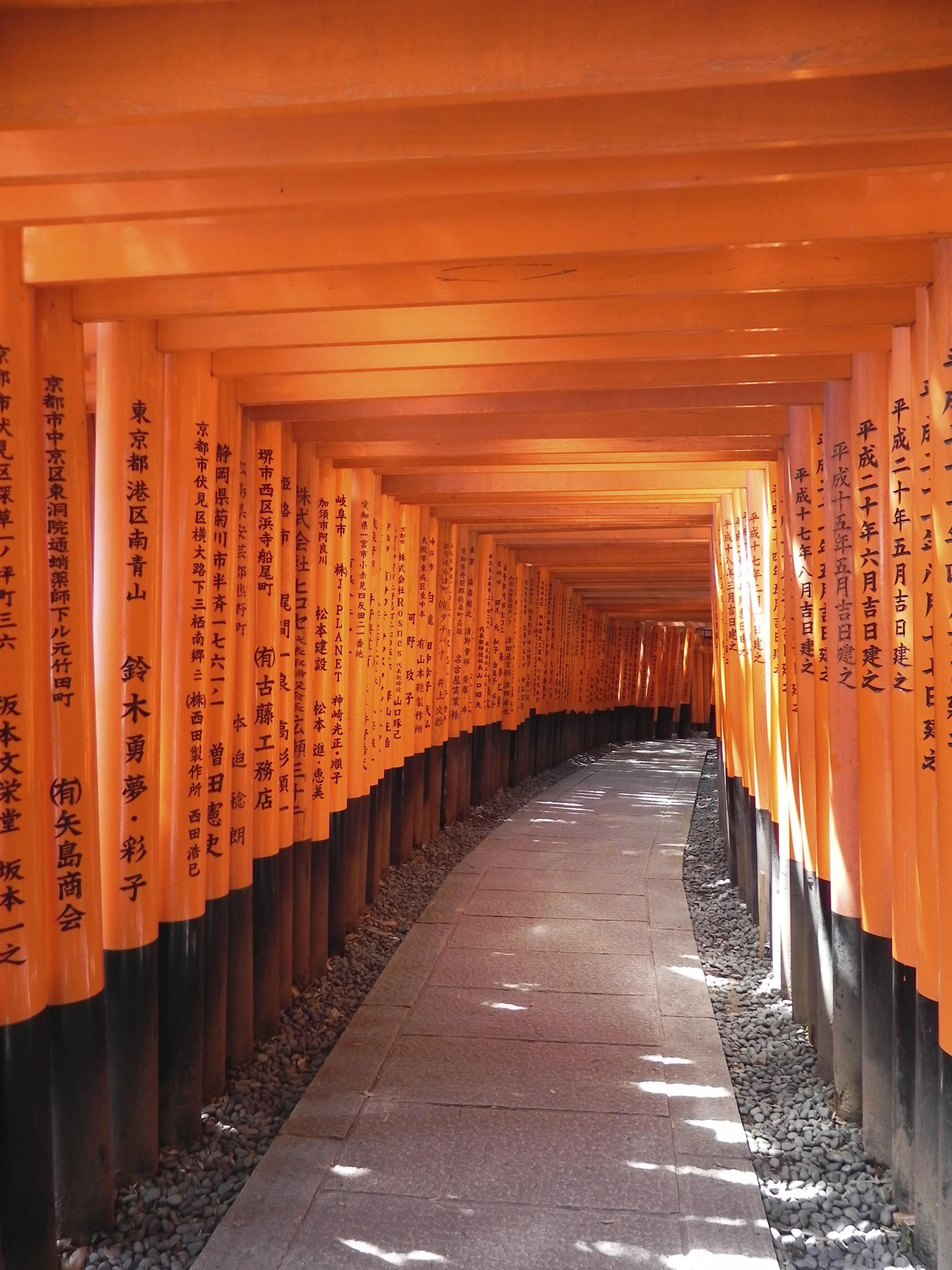 Kyoto Sightseeing: Durch die Tore von Fushimi Inari