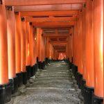 Durch die Torii von Fushimi Inari