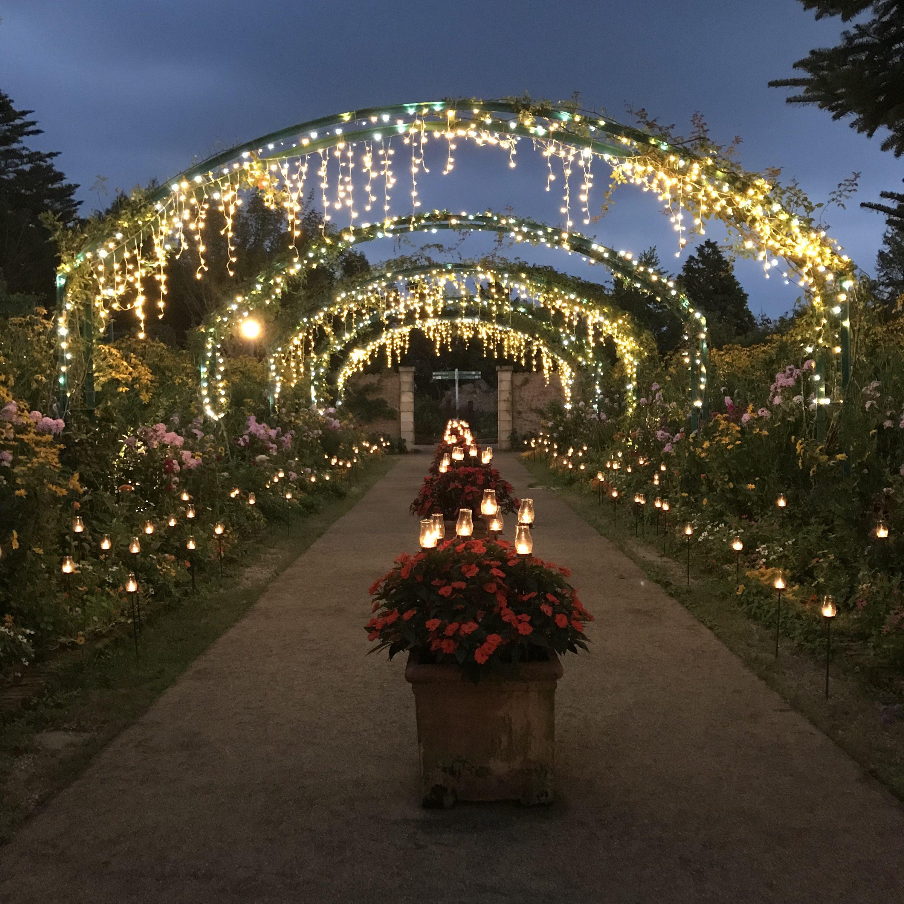 Kyoto Sightseeing: Gartenmuseum Hiei