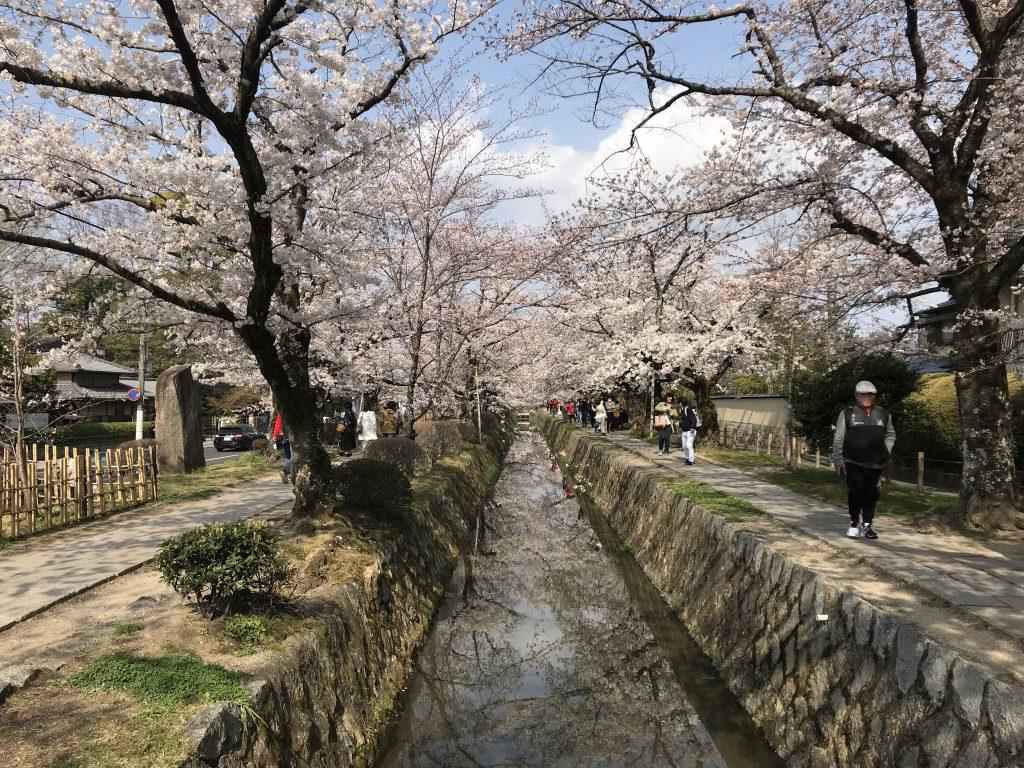 Philosophenweg Kyoto