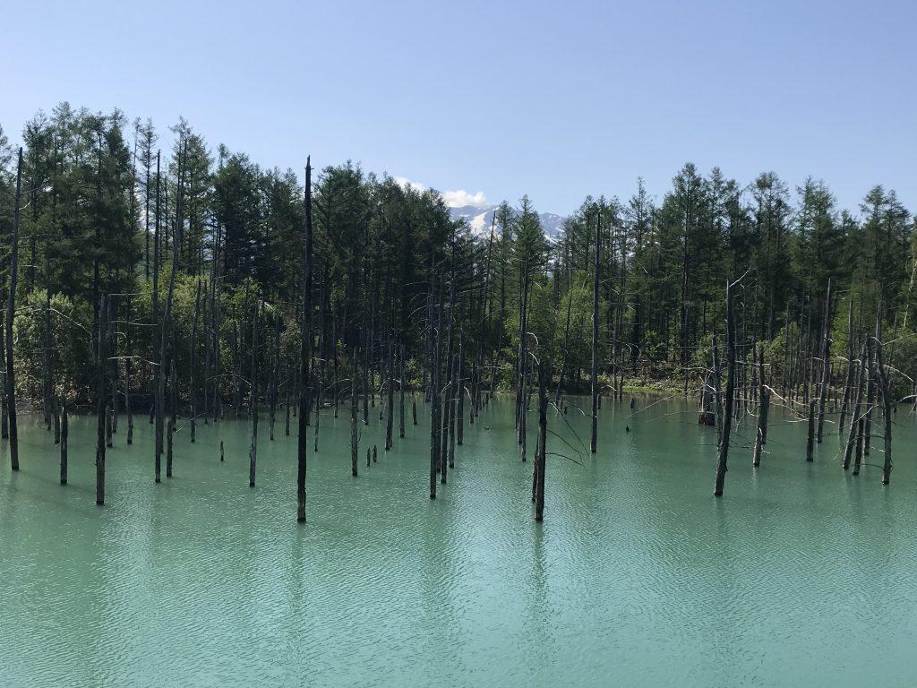 Biei Blauer Teich